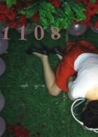 1108(爱情片)