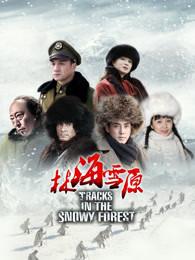 林海雪原 2017