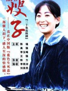 嫂子(全20集)