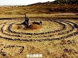 """新疆现200多个神秘""""怪石圈"""""""