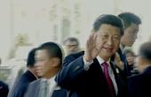 印度学者:大国外交不断提升中国的国家形象和国际影响力