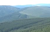 """河北崇礼化身""""绿色氧吧""""森林覆盖率达54.89%"""