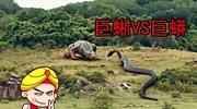 唐唐说电影:巨蜥VS巨蛇