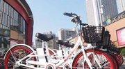 广州市禁止共享电单车上路