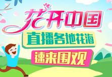 """""""花开中国""""活动宣传片"""