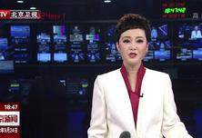 中国梦365个故事:御窑金砖