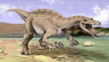 海王龙吃恐鳄-犹他盗龙vs波斯特 鳄   剧情片   主龙假 鳄 类手兽成恐 龙 天敌   剧情片