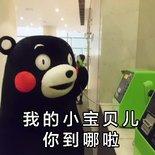 熊本熊路痴女票表情包.jpg