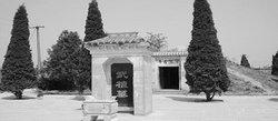 武植古墓图片