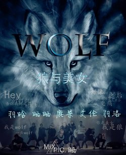 狼与美女剧场版mv 狼与美女中文剧场版