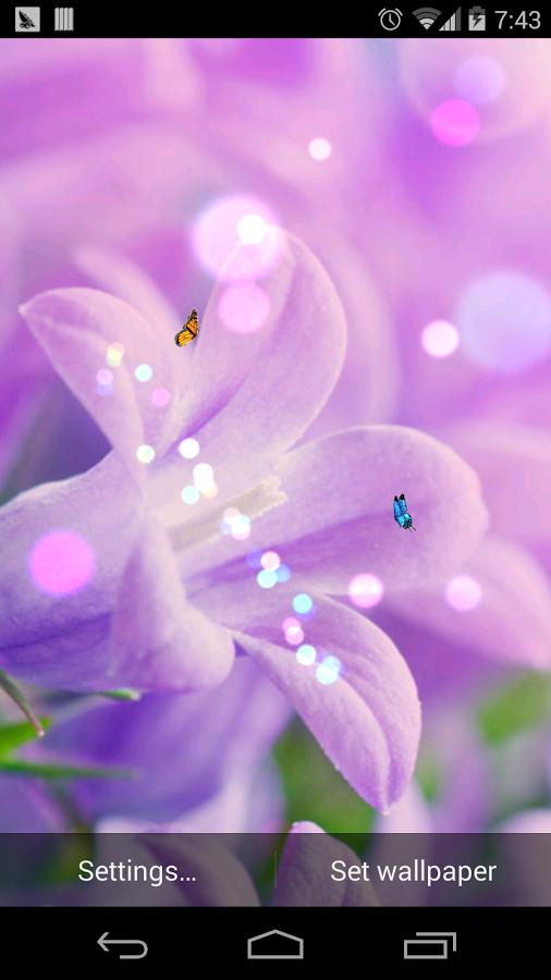 壁纸主题 春天的花朵lwp免费官方下载