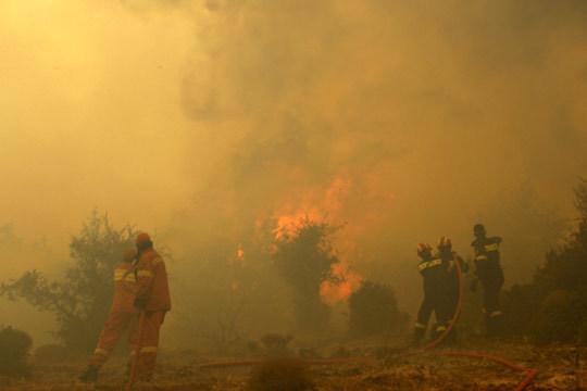 2009年8月21日起的希腊森林大火图片
