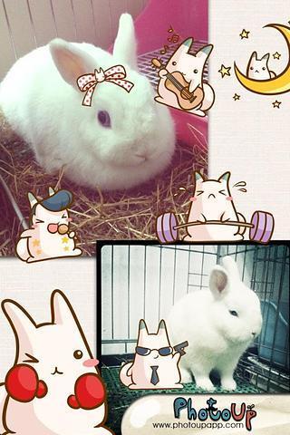 《 Nabbit Camera 》截图欣赏