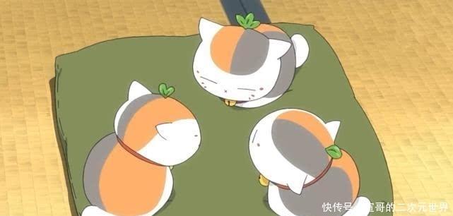 """夏目友人帐: 三三老师不仅""""生了""""三只猫咪,而且猫咪头上长叶子"""
