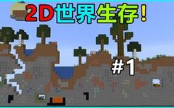 平面的2D世界中该如何继续生存下去?平面生存#1