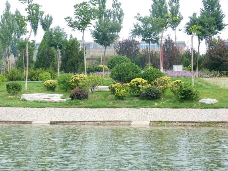 太原学府公园