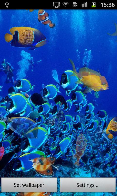 壁纸 海底 海底世界 海洋馆 水族馆 桌面 480_800 竖版 竖屏 手机