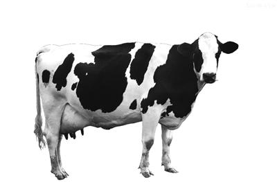 奶牛削笔器简笔画