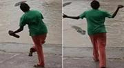 女子遛狗偶遇鳄鱼