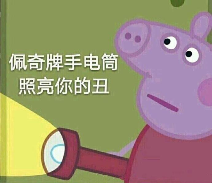 小猪佩奇手电筒照亮你的丑搞