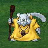 猫魔导士.jpg