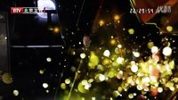 北京卫视档案_360视频