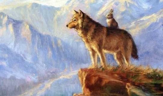 兔子爱上了已婚的狼,句句精辟!