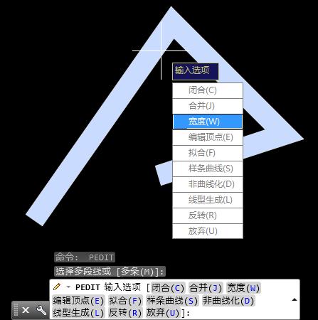 用CAD多段线画线时线宽响应很粗的请问win10打开cad无变成图片