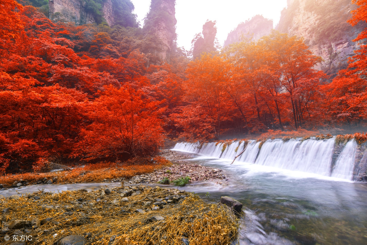 张家界国家森林公园观秋色