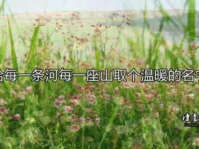 诗意敦煌 为你读诗《面朝大海,春暖花开》