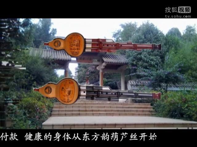 葫芦丝名曲欣赏 刘三姐