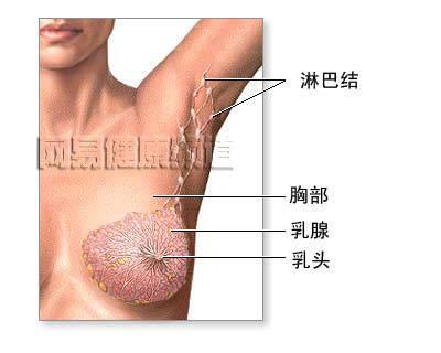 的左侧乳房靠近腋下的位置最近老是很痛,乳头有想初乳一样的东