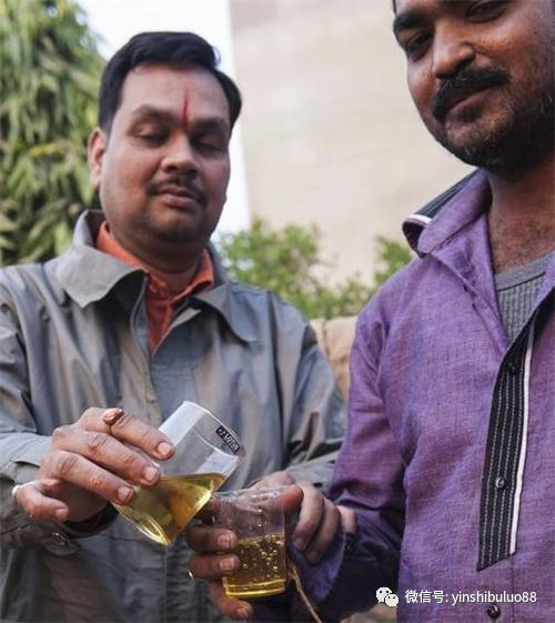 印度人喝牛尿:计划把母牛尿推广全世界 - 一统江山 - 一统江山的博客