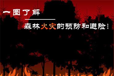 森林火灾的预防和避险
