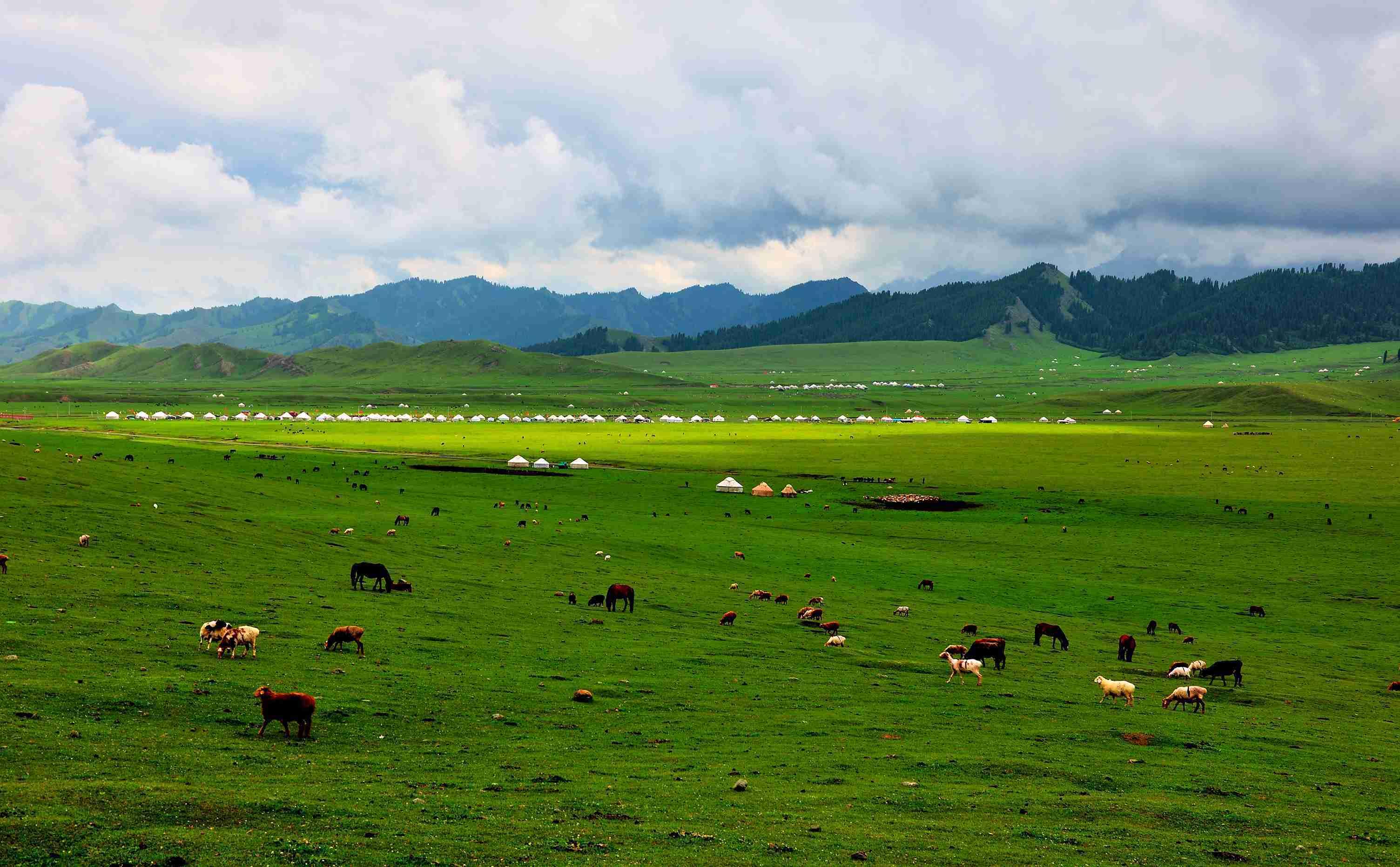 八月的草原,水草肥美牛羊欢唱,正是前往游玩的最佳时节。 推荐点:那拉提草原   行走在动植物王国里     那拉提草原位于新疆伊犁州新源县,自古以来就是著名的牧场,那拉提的草原景观和我国其他草原有所不同,属于高海拔的山河谷草原,草原的多样性特点十分明显,有高山草场、河谷草场、山坡草场、草甸草场和高寒草场等。   交错的河道、平展的河谷、高峻的山峰、茂密的森林在草原上交相辉映,一派迷人景象。
