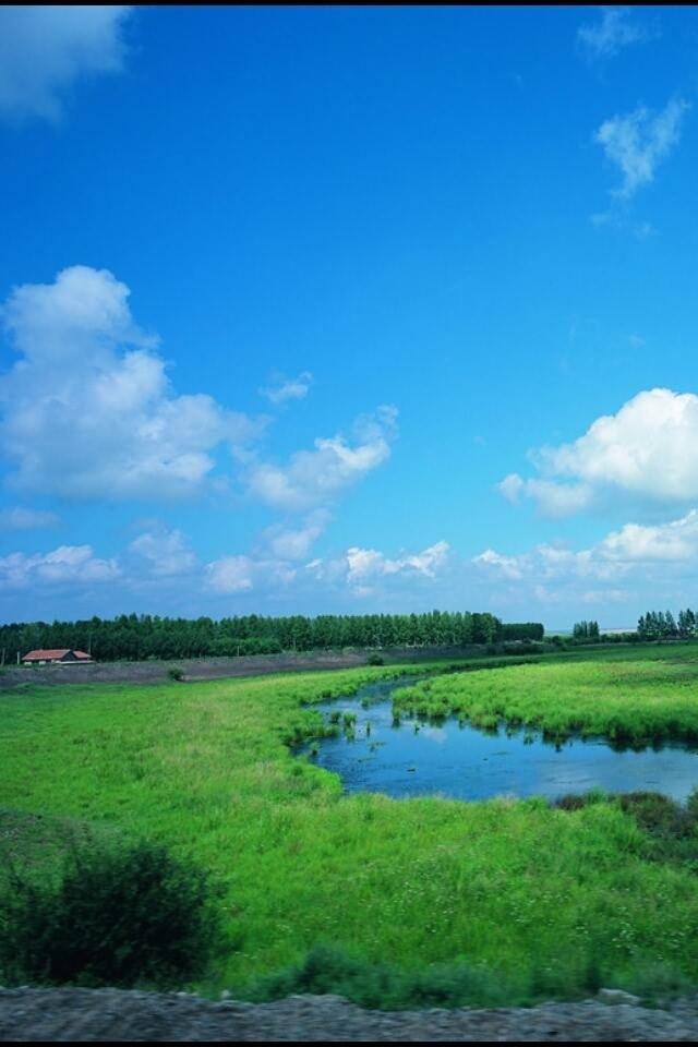 壁纸 草原 风景 摄影 桌面 640_960 竖版 竖屏 手机
