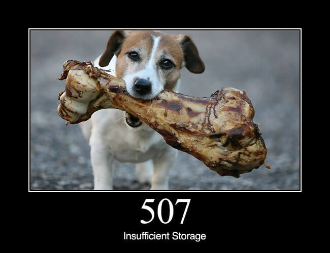 507 Insufficient Storage