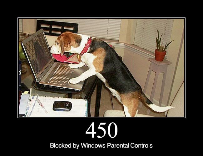 450 Blocked by Windows Parental Controls