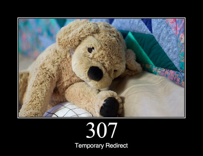 307 Temporary Redirect