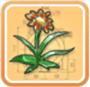 花朵头饰.png