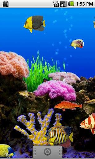 壁纸 海底 海底世界 海洋馆 水族馆 307_512 竖版 竖屏 手机