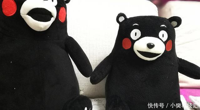 表情的熊也很可爱,流汗图片卡通--熊本熊公笑风靡的黑色网络表情图片