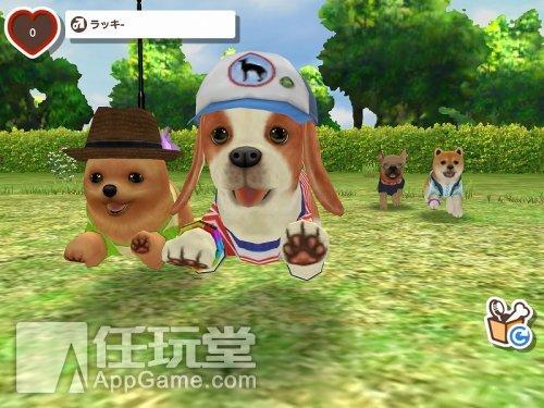 狗狗-社交游戏