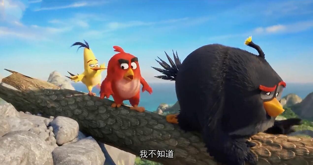 《愤怒的小鸟》电影中文预告