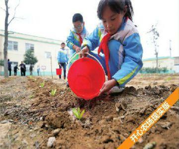 临潼一小学校园内建开心农场学生自种自收