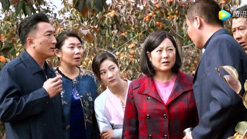 长青带外商来宜水村,外商想买断十年的柿子