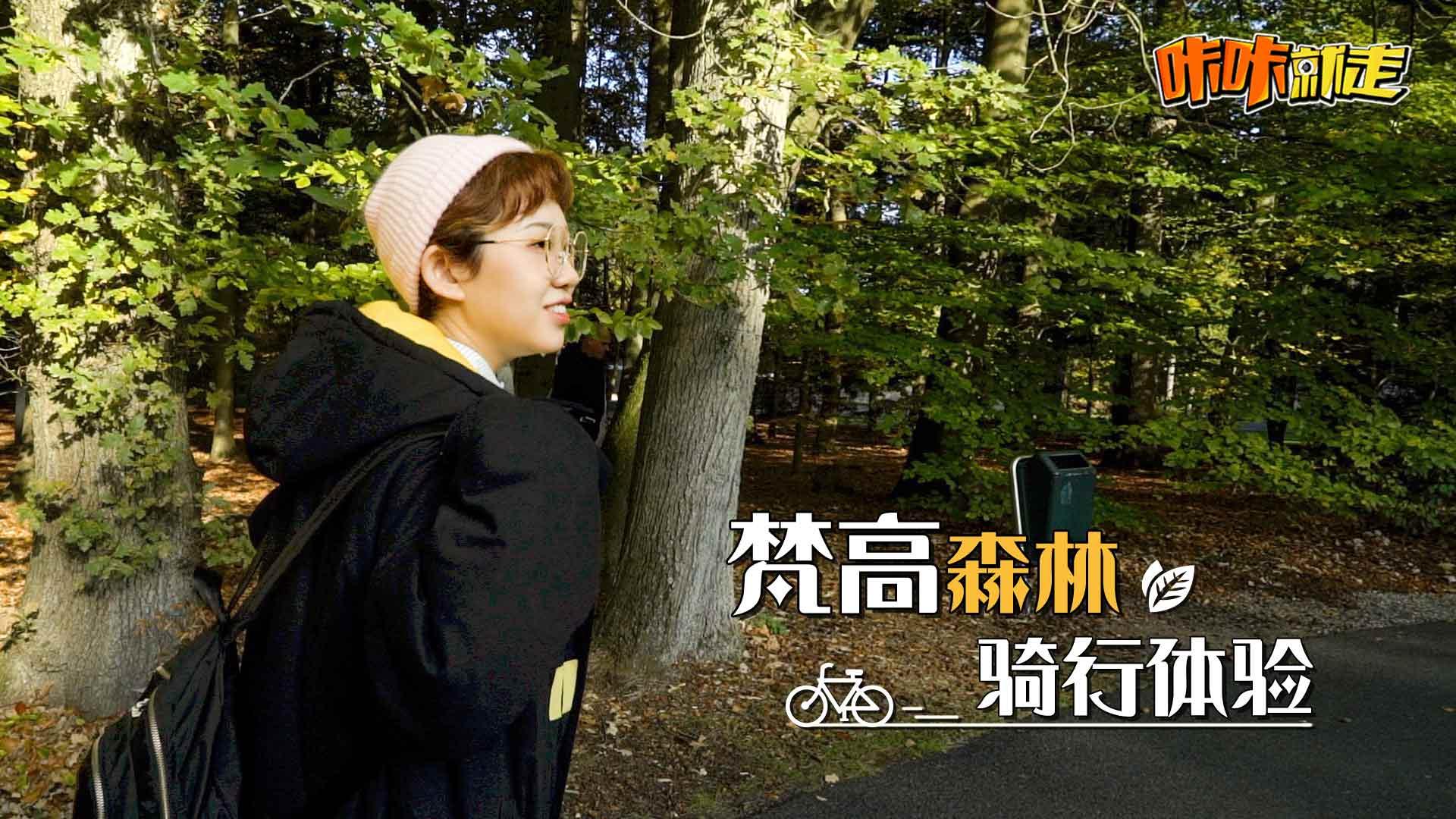 漫步梵高森林,带你畅游清新天地!