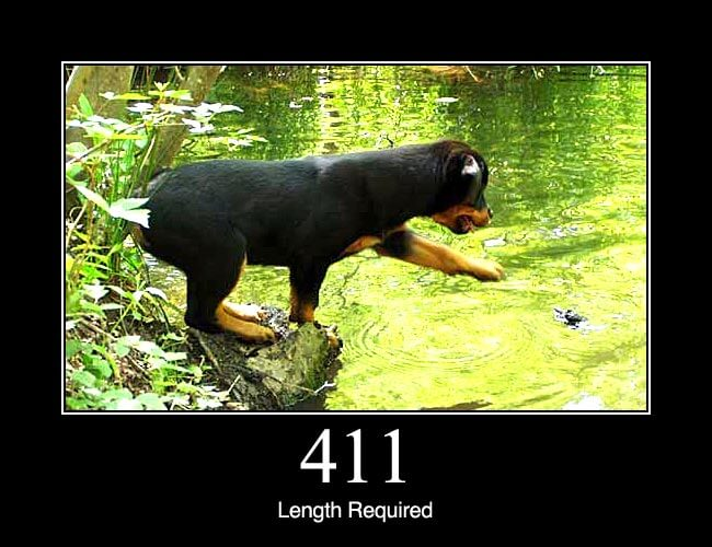 411 Length Required
