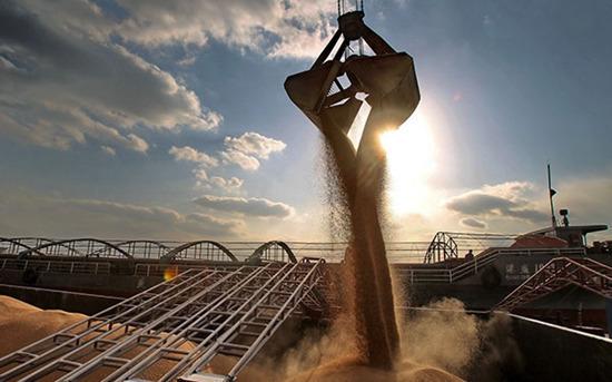 财幂:万吨小麦腐烂时 我们仍在大量进口粮食 - 山中小雀 - 山中小雀 [收藏阁]
