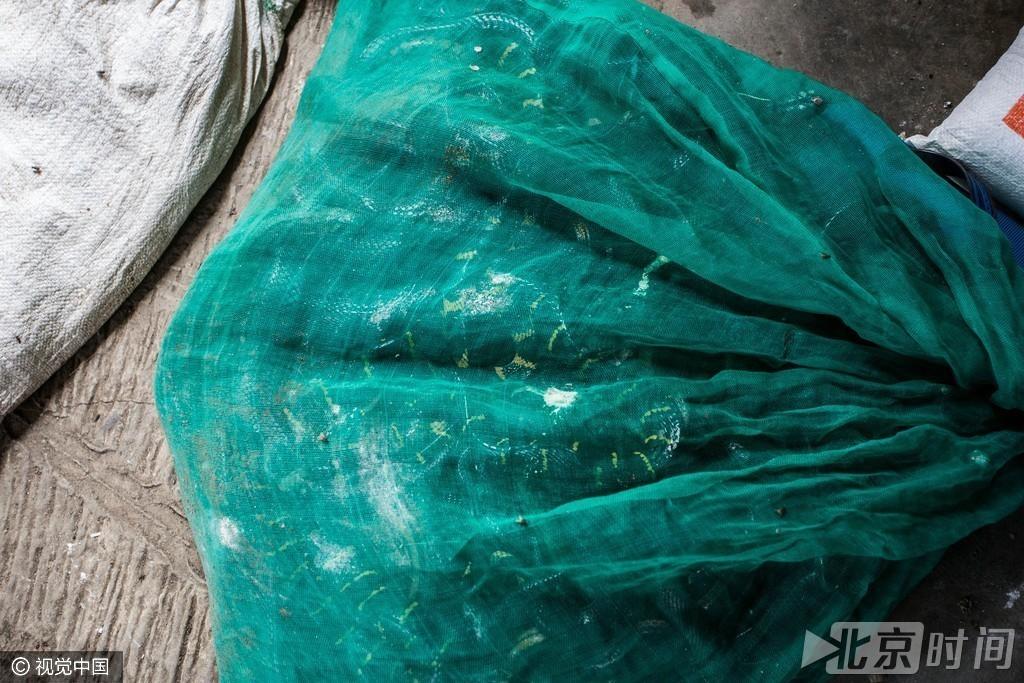 【转】北京时间     实拍工厂手剥蛇皮现场 只为制成奢侈品 - 妙康居士 - 妙康居士~晴樵雪读的博客